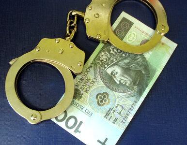 Opiekowała się dziećmi i kradła ich pieniądze… ze skarbonek. Grozi jej 5...