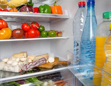 Jak ograniczyć marnotrawienie żywności w domu? Porady ekspertów