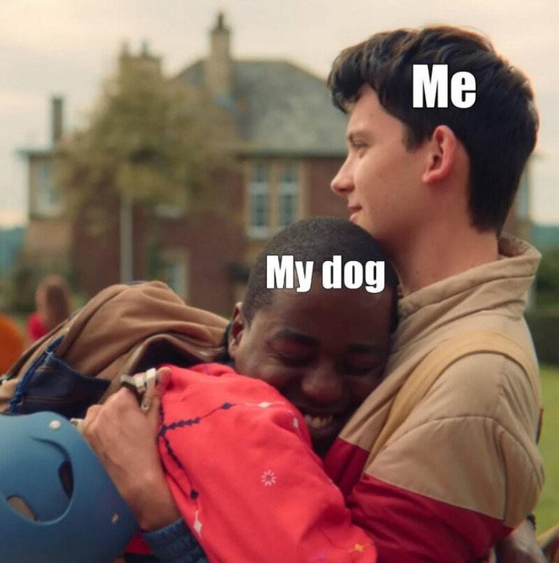 Ja/Mój pies