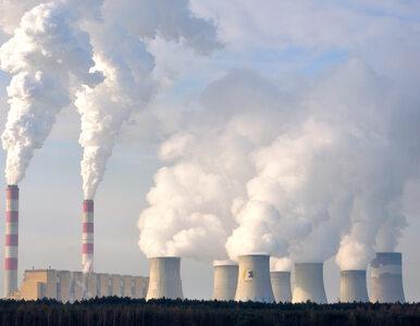 Polska największym trucicielem. Powstał raport na temat elektrowni...