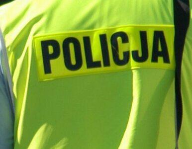 Policja odkopała zwłoki mężczyzny przy budowanej drodze