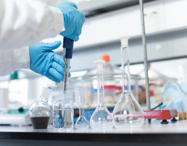 Koronawirus. Australijscy naukowcy jako pierwsi odtworzyli wirusa poza...