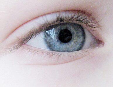 Kobieta wyłupiła 6-latkowi oczy. Chciała je sprzedać?