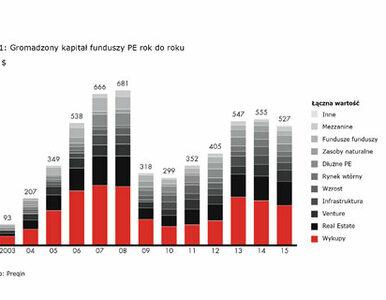 Rynek private equity - globalna stabilność, Europa na lekkim minusie