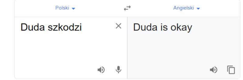 """Tłumacz Google i fraza """"Duda szkodzi"""""""