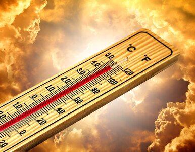 Rekord gorąca na Syberii. Naukowiec wieszczy katastrofę
