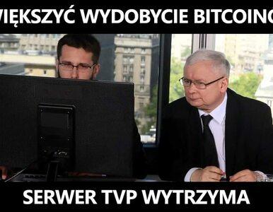 """Awaria w TVP oczami internautów. MEMY są bezlitosne. """"Serwer wytrzyma"""""""