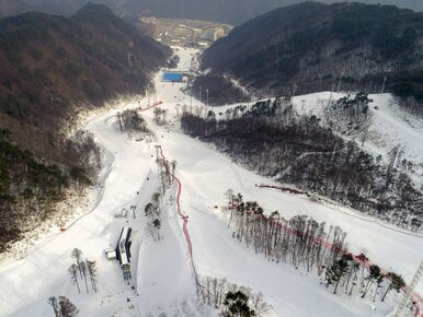 Nagrody za medale igrzysk w Pjongczangu. Ile mogą zarobić Polacy?