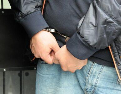 Chorwat udawał Rumuna, był poszukiwany ENA. Trafił w ręce Straży Granicznej