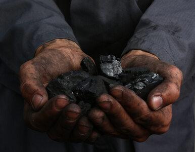 Górnictwo podstawą polskiej energetyki jeszcze przez 20-30 lat
