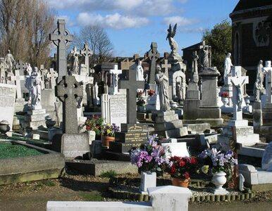 Wielka Brytania. Na grobach Polaków zapalono tysiące zniczy