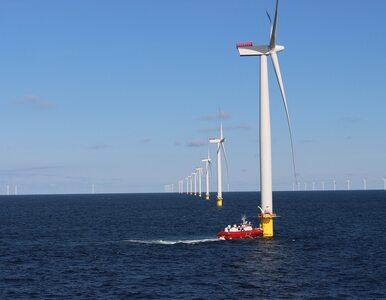 Duńczycy mają plan. Wyprodukują wodór z wiatraków morskich