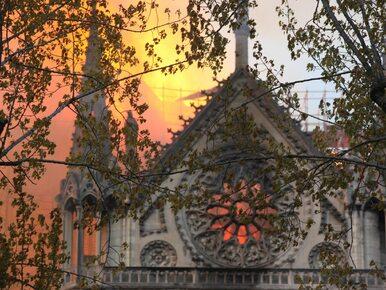 Pożar katedry Notre Dame. Trzy lata temu utajniono ważny raport